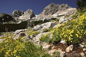 durmitor-national-park-montenegro-13216259