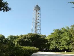 mi torre