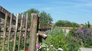 ko rhine gardens