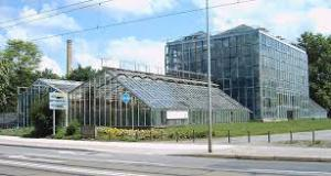 mag greenhouse 2