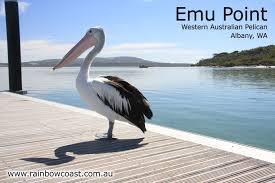 al emu 2