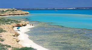 wa coral bay