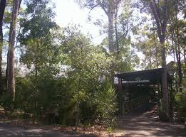 br forest park