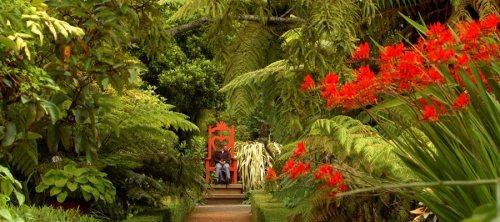 dun larnach gardens