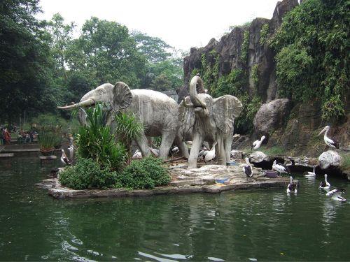 jaka zoo