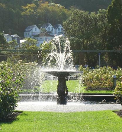 well botanic fountain
