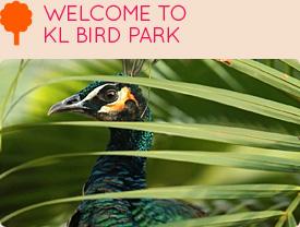 k bird park 3