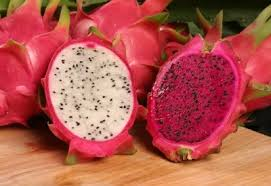 put dragon fruit