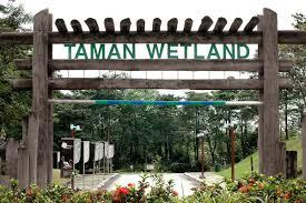 put wetland