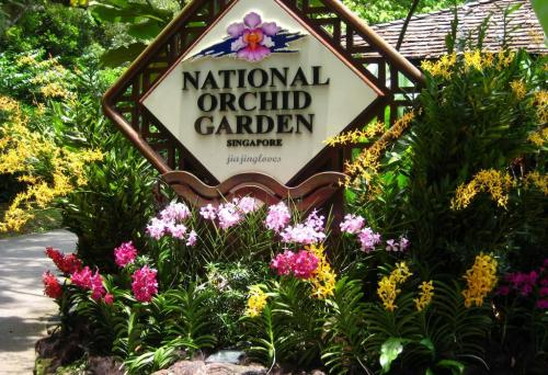 sing National-Orchid-Garden