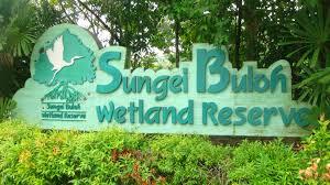 sing wetland reserve