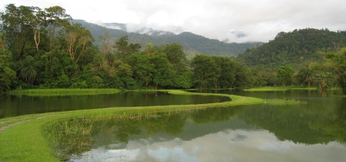 tai lake garden 2