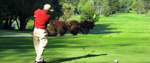 yan golf