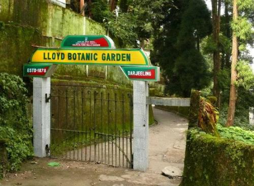 dar botanical 2