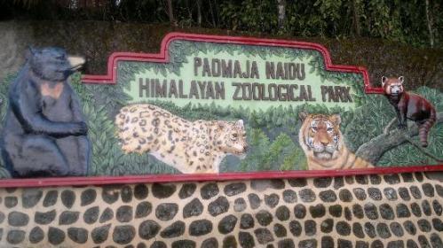 dar zoo