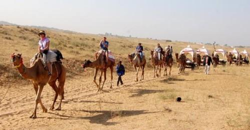 jod camel 2