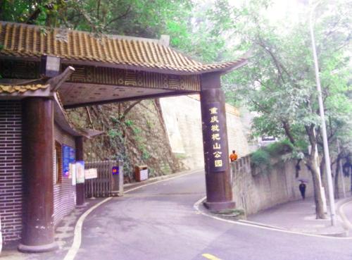 chon-loquat-mountain