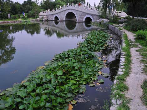 bei-botanic-gardens