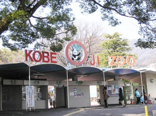 kob-oji-zoo