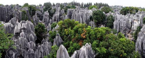 kun-stone-forest