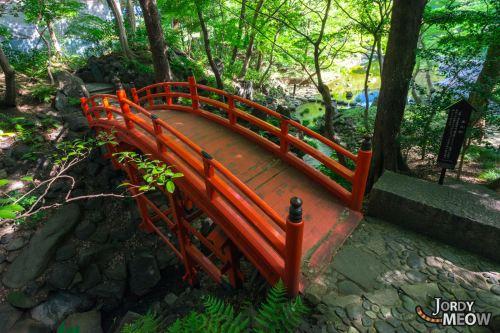 tok-tsutenkyo-bridge