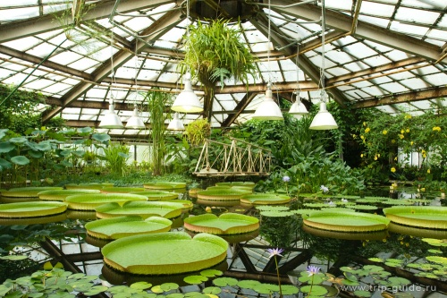 pet-botanical-garden-2