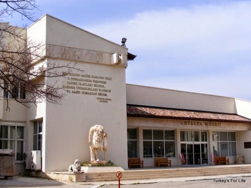 ant museum
