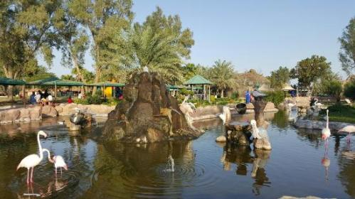 bah al-areen-wildlife-park