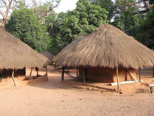 guinea varela tribal