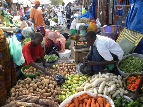 sen kaolack market