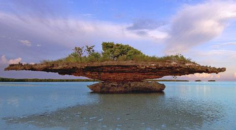 sey Aldabra-Atoll