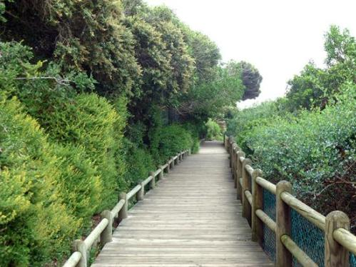 cape boulders boardwalk