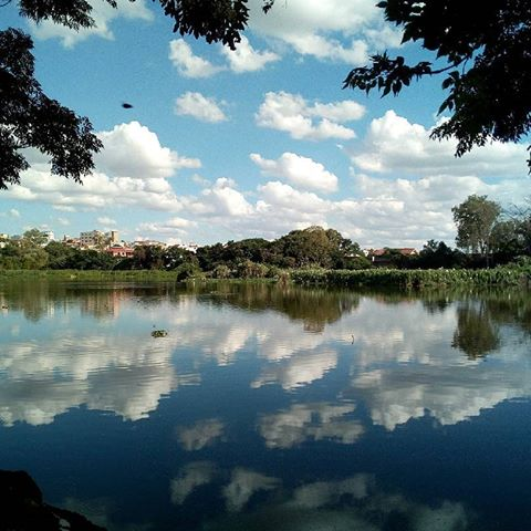 mad parc lake
