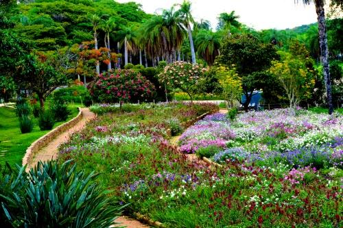 belo botanic
