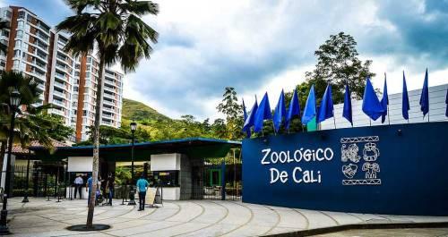 cali zoo