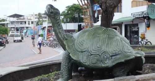 gal tortoise statue
