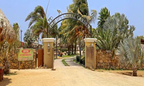 aruba animal garden