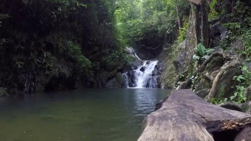 belize waterfall 2