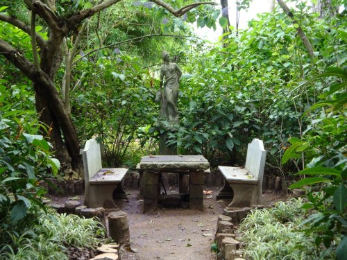 guat botanic 3