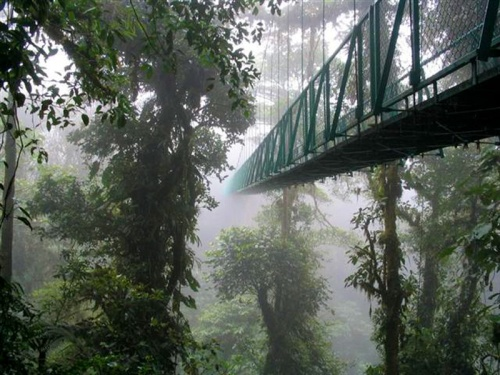 rica monteverde