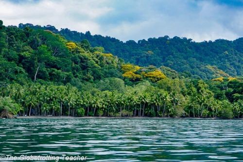 rica Osa-Peninsula-Costa-Rica-76