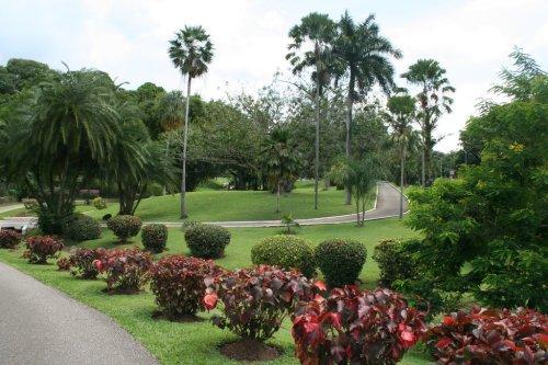 tri port botanical