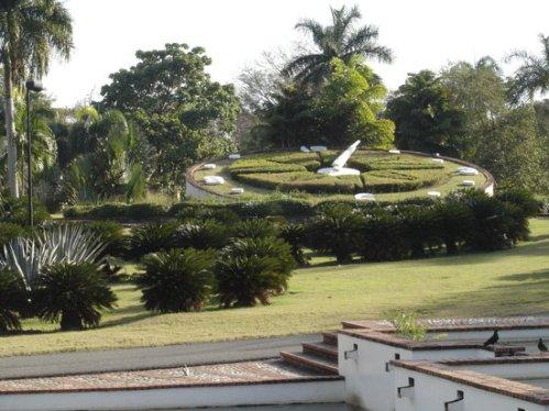 dom botanic 2