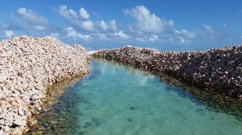 brit anegada horseshoe reef
