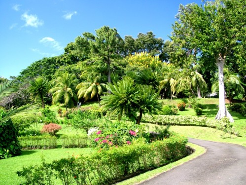 gren botanical