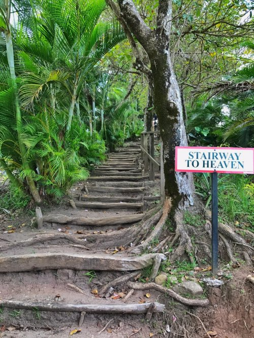 lucia nature trail stairway