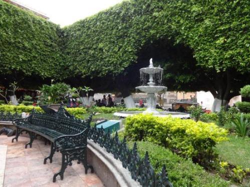 mex guana jardin 2