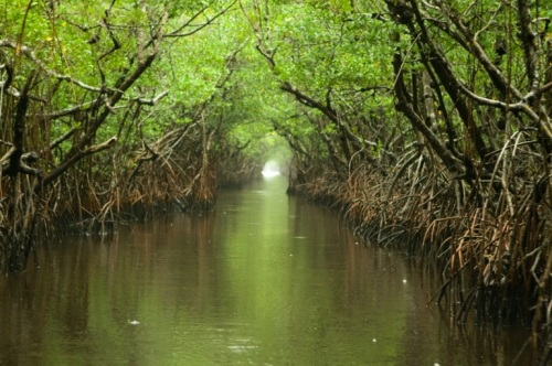 Everglades National Park  tourism destinations