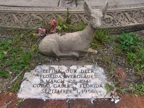 florida cemetery 2