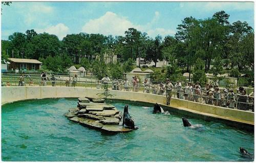 atlanta grant zoo